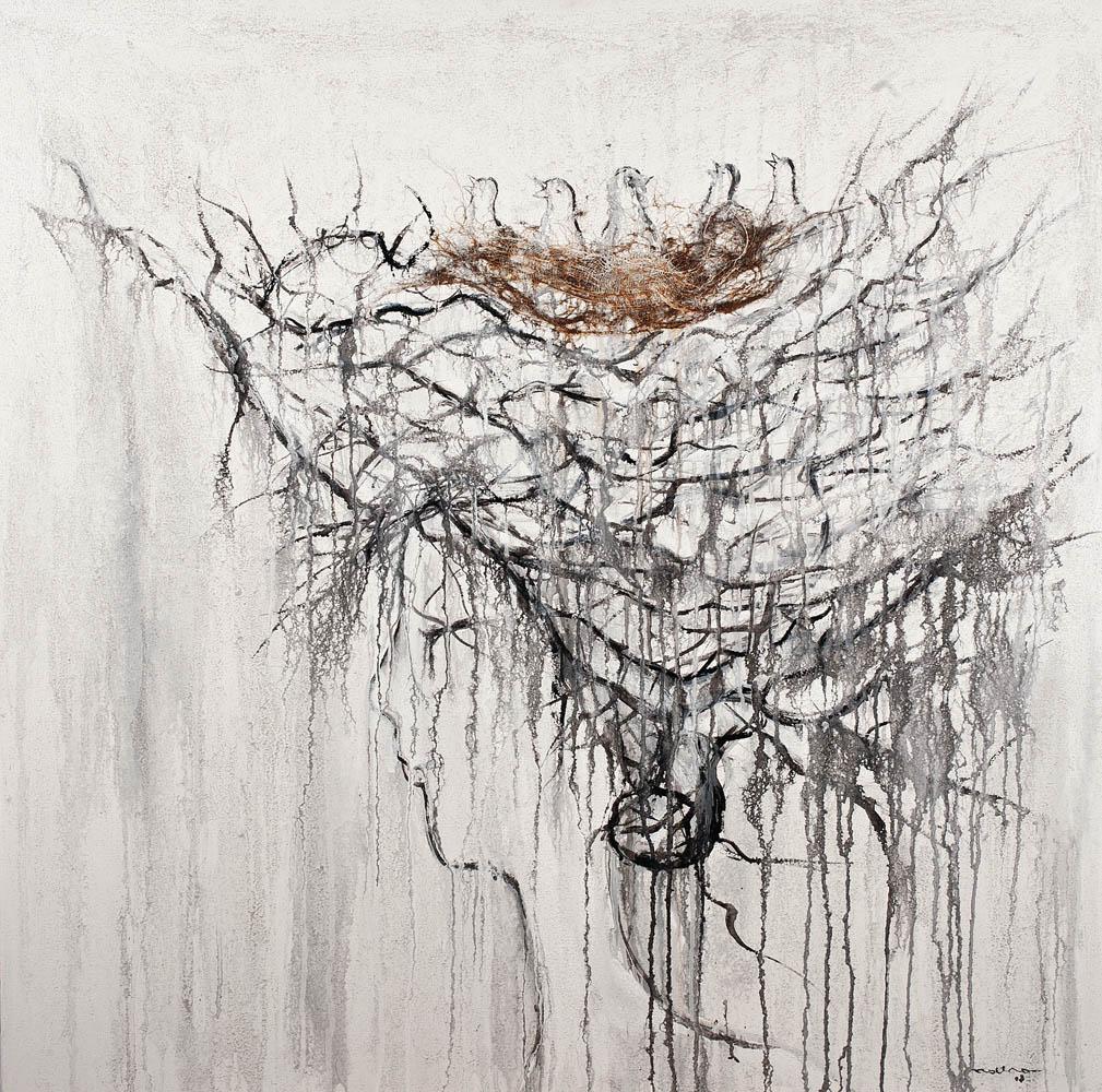 Dolce nido